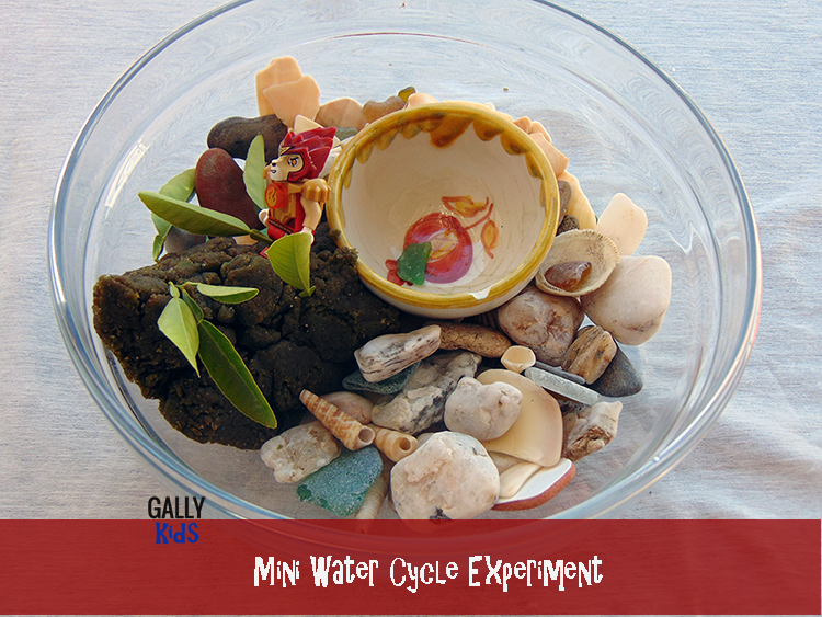 A water cycle experiment that you can easily recreate at home. If you have water and a bowl, you're good to go. Fun for the kids and makes it easy for them to visualize the water cycle. Step by step instructions plus video and PDF download