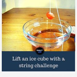 Science Experiment With Ice And Salt : Lift An Ice Cube With String
